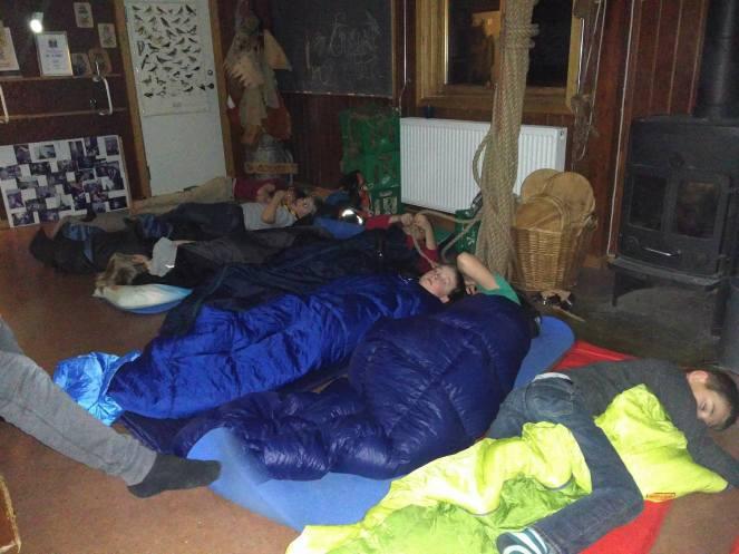 Søde børn der ræve sover