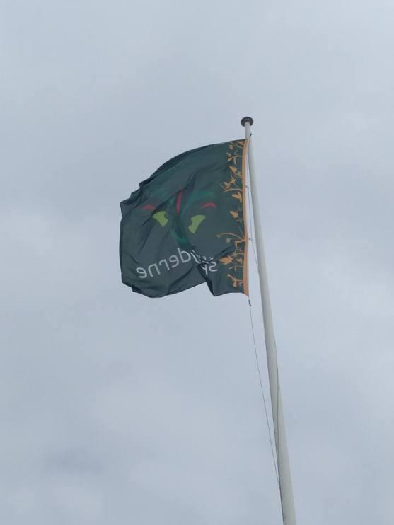 så har vi indtaget skolens flagstang