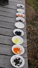 kendte madvare lavet til sirup, tilsat frugtfarve og gelantine